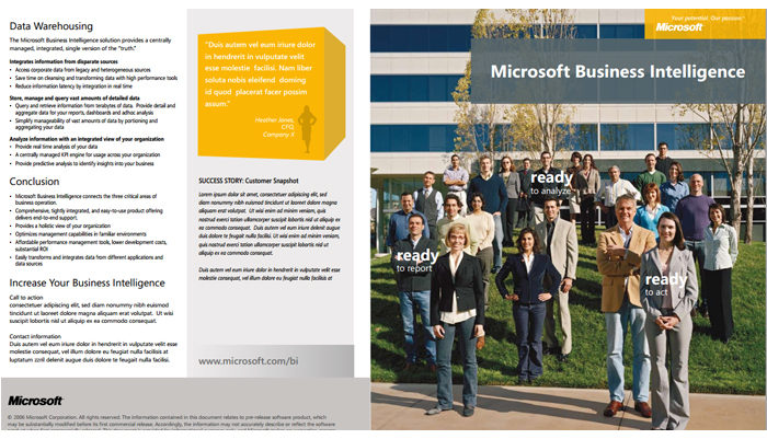 Microsoft Business Intelligence Brochure